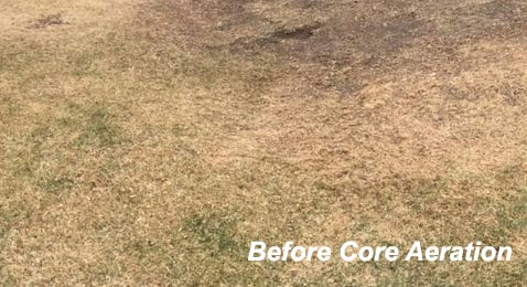 Before Core Aeration